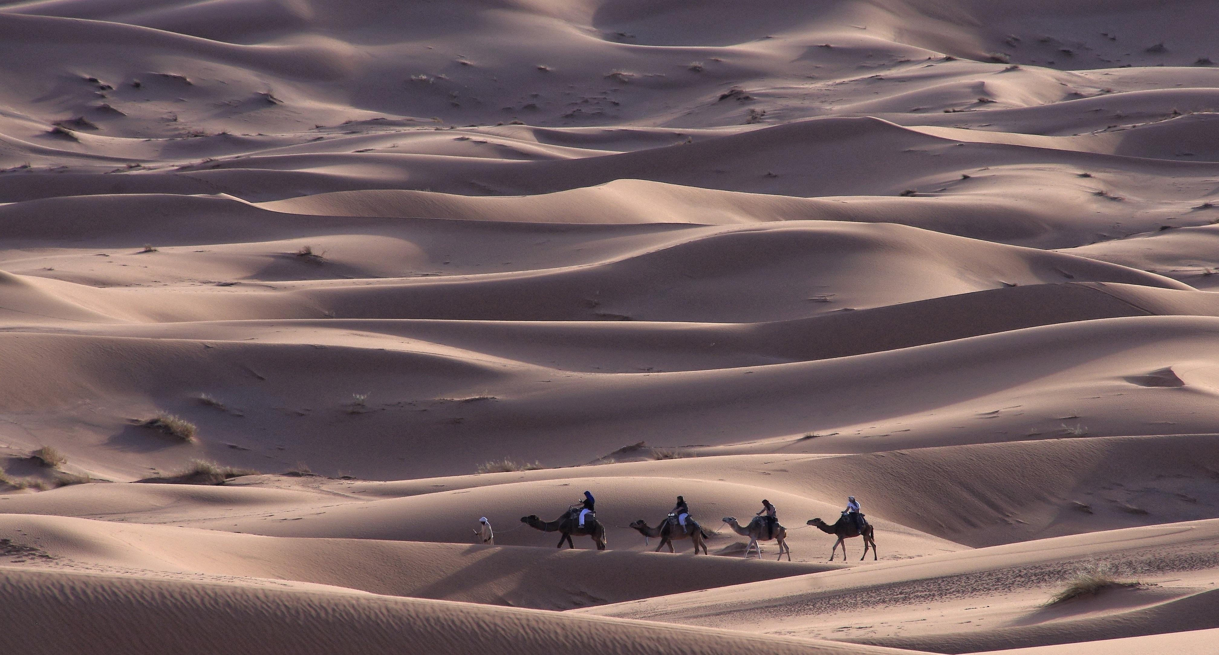 Sanddünen Wüste Marokko